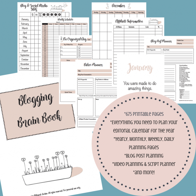 Blogging Brain Book