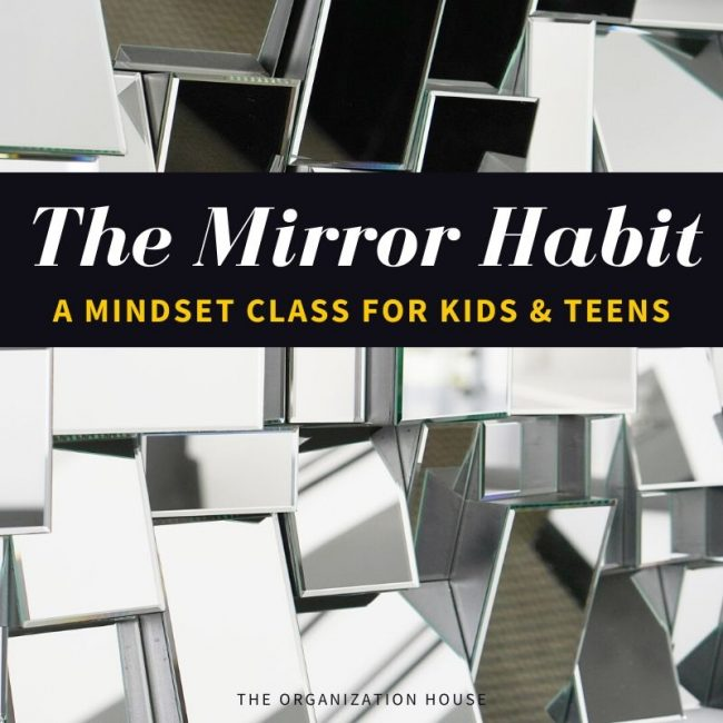 The Mirror Habit - A Mindset Class for Kids and Teens