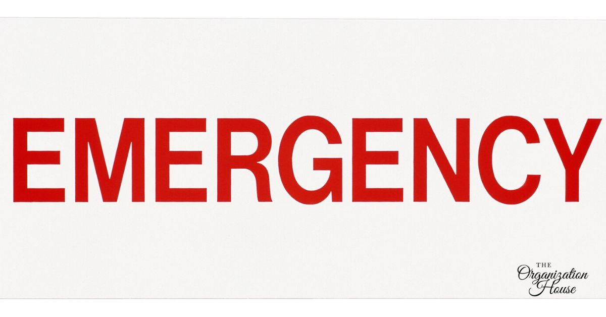 Pandemic Emergency Checklist for Families -TheOrganizationHouse
